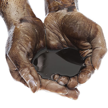 cupped hands holding crude oil